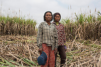 """Cambodia - Kampong Speu Province - Chei Reoun, 35, and her mother Hai Morn, 64 standing in the sugarcane plantation where they work daily as labourers. They both come from Kork. In 2010, they were both stripped of their land. Chei was forced to accept a compensation of 70,000 riel (around 17 USD) for 1,5 hectares of land, after the commune chief warned her that the company would have taken her land with or without her consent. """"With the plantation, they told us that the work would have knocked at our door. It is true, but the work is just about sweating and cutting all day long"""" she complains. While Chei is still able to pay for the school fees of her three children, she is growing worried about their future. """"Without land, they will grow poorer and poorer"""" she says."""