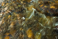 The powerful stream of a mountain river at the Grand Teton National Park in Wyoming.