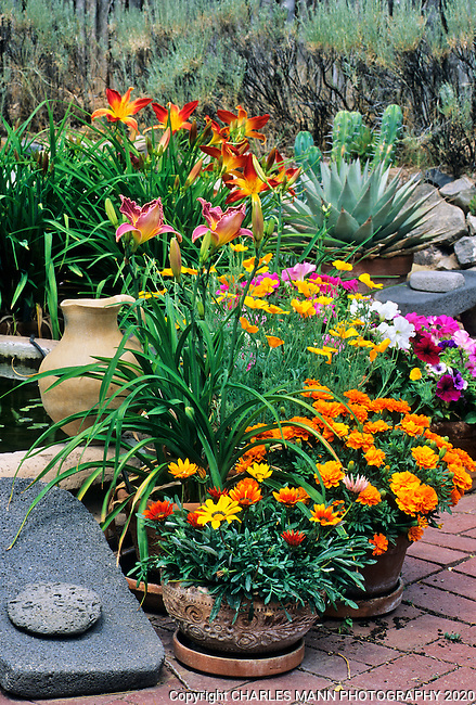The gardens of Santa Fe,New Mexico, offer a constant suppply of delightful surprises and artful delights. Jim Kania adornes his garden with simple but colorful pots of daylilys and  a native American  metate.