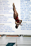 24 MAR 2012:  Eileen Garcia of Clark University performs the in the 3 meter diving during the Division III Mens and Womens Swimming and Diving Championship held at the IU Natatorium in Indianapolis, IN.  Garcia finished seventh in diving with a score of 443. 65. Michael Hickey/NCAA Photos