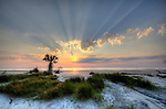 Hunting Island Beach South Carolina