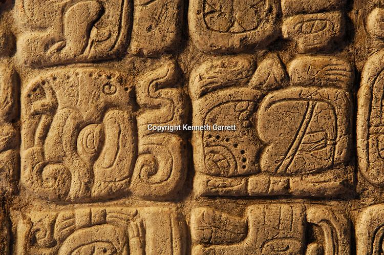 Maya Rise and Fall,Tikal, Stelle 31,  glyph, Smoking Frog,  Smoke Frog,Ancient Cultures, Maya, Mayan, stele, stela,Guatemala