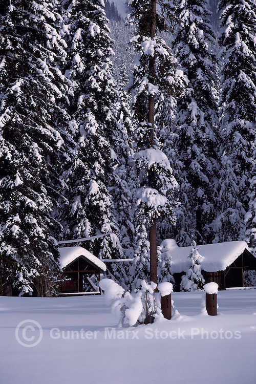 Snow Covered Log Cabins at Stagleap Provincial Park, Kootenay Pass Summit, BC,  British Columbia, Canada - BC Rockies Region, Winter