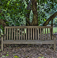 Fairchild Tropical Botanic Gardens, HDR, Park Bench with Oak Tree, Fallen leaves<br />