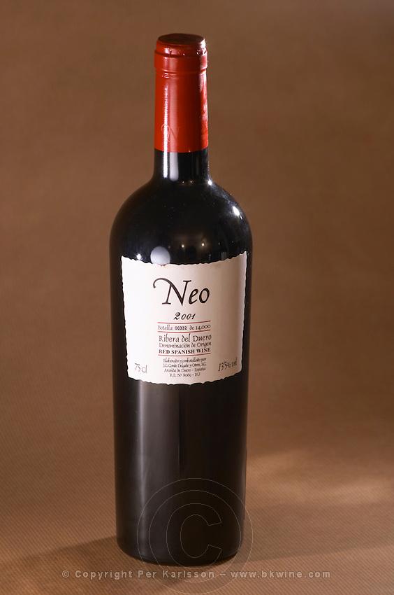 Neo 2001, Ribera del Duero, JC Conde Delgado y Otros.