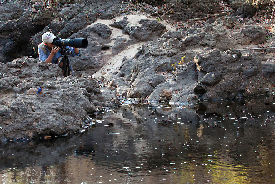Wildlife photographer photographing wildlife at waterhole, dry deciduous forest, Kirindy Forest. Western Madagascar.