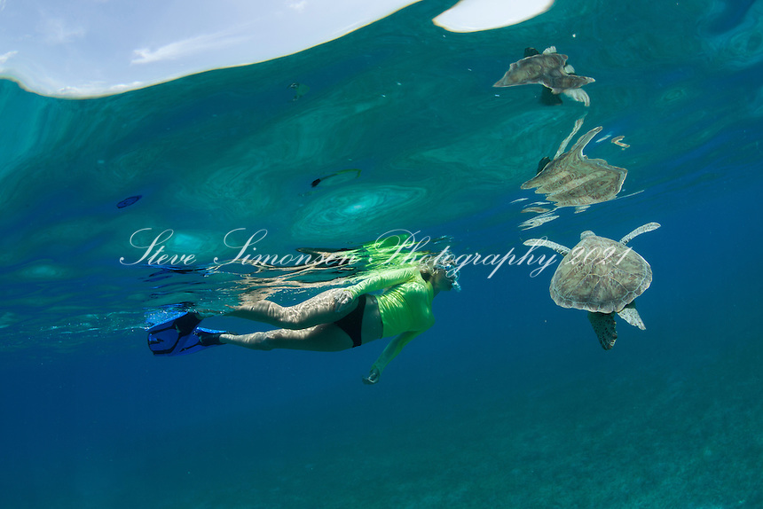 Shelby and a green sea turtle<br />