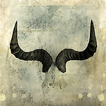 Wildebeest Horns. Photo based illustration.