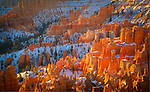 Utah, Southern, Bryce Canyon National Park. Sandstone Hoodoos in morning sun in Zion National Park.