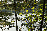 Hortonia, VT, USA - August 24, 2011: View through the trees surrounding lake with an island in the distance