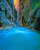 Zion Narrows and Virgin River, Zion National Park,  Utah Morning, June, Narrow sandstone walls thousands of feet high, Zion Canyon
