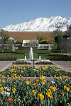 0604-01 April GCS..Scenic Images from Campus..Spring Flowers, Brigham Young Statue, ASB Fountain...Photo by Mark Philbrick/BYU..Copyright BYU Photo 2006.All Rights Reserved.photo@byu.edu   (801)422-7322