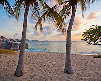 Virgin Gorda, British Virgin Islands, Caribbean <br /> Twp palm trees on a quiet beach on Spring Bay at sunset, Spring Bay National Park