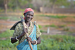 Helena Akoi works at the Multi Agricultural Jesuit Institute of Sudan (MAJIS), an agricultural school located outside Rumbek, South Sudan.