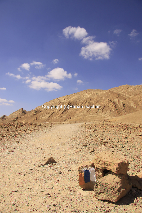 Israel, Negev, Israel Trail by the Ammonite Wall in Ramon Crater