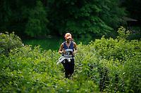 A woman jogs in central park, New York.  06/05/2015. Eduardo MunozAlvarez/VIEWpress