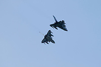 German Tornado fighter jets. Nato Tiger Meet is an annual gathering of squadrons using the tiger as their mascot. While originally mostly a social event it is now a full military exercise. Tiger Meet 2012 was held at the Norwegian air base Ørlandet.