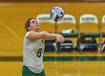 1 November 2015: SUNY College at Old Westbury Panther Setter Chelsey Hoffman, a Freshman from East Meadow, NY, in action against the Yeshiva University Maccabees at SUNY Old Westbury in Old Westbury, NY. The Panthers edged out the Maccabees 3-2 in NCAA women's volleyball, Skyline Conference play. Mandatory Credit: Ed Wolfstein Photo *** RAW (NEF) Image File Available ***