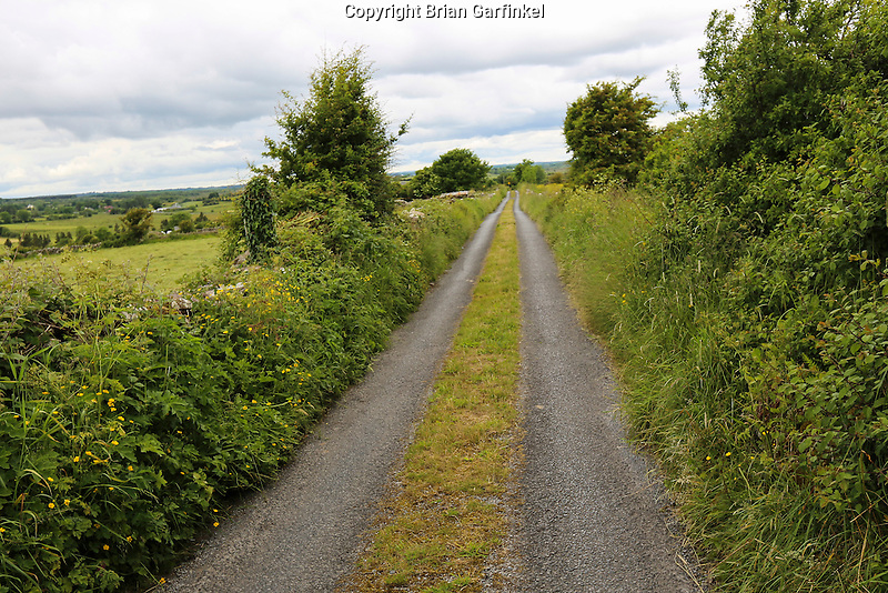 A small two way country road with grass on the middle of the roadway on our way to Granlahan, County Roscommon, Ireland on Tuesday, June 25th 2013. (Photo by Brian Garfinkel)