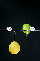 HELIUM AND ARGON FILLED BALLOONS<br /> (Variations Available)<br /> The Two Balloons Are Filled To The Same Volume<br /> After 5 hours the helium filled balloon is smaller than the nitrogen filled balloon. Helium effuses out of the balloon faster than Argon.  Light atoms or molecules effuse through the pores of the balloons faster than heavy atoms or molecules.