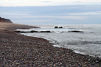 COASTLINE<br /> Rocky Coast, Cape Cod