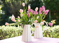 A pair of matching white ceramic jugs is filled with tulips in varying shades of pink