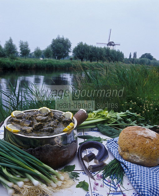 Europe/Belgique/Bruges: Anguilles au vert,