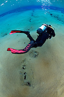 Diving, Silfra, Thingvellir lake, Thingvellir National Park, Iceland.Model release by photographer