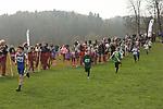 2017-03-11 Surrey Schools XC 32 MA rem