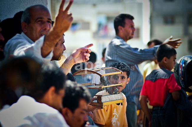 Palestinian man sells birds in the main market in Gaza city on June 24,2010. Photo by Mustafa Hassona