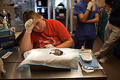 Kahlina Frey, left, Co-Student Coordinator of the Turtle Rescue Team, waits for the anesthesia to work on Van Gogh prior to surgery at NC State University's College of Veterinary  Medicine, Thursday, July 22, 2011.