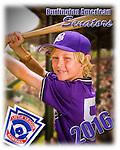 4 June 2016: The Burlington American Little League athletes pose for their team photos at Calahan Park in Burlington, Vermont. Mandatory Credit: Ed Wolfstein Photo