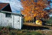 Old farm buildings during fall color in Herman, in Michigan's Upper Peninsula.