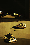 Rocks sit in brass colored water reflections