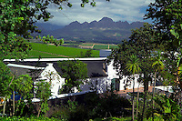 STELLENBOSCH, SOUTH AFRICA, NOVEMBER 2004. Neethlingshof wine estate. The Stellenbosch region is crammed with some of the best wine estates in the world. Photo by Frits Meyst/Adventure4ever.com