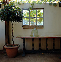 A glass clocher sits on top of a wooden side table in this vine-covered conservatory