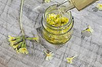 Schlüsselblumen-Honig, Schlüsselblumenblüten-Honig, Schlüsselblumen-Blüten, Honig mit Blüten von Schlüsselblume. Hohe Schlüsselblume, Wald-Schlüsselblume, Waldschlüsselblume, Primel, Primula elatior, Oxlip, true oxlip, Paigles, La Primevère élevée, Primevère des bois