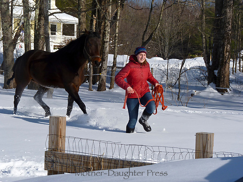 Young Woman runs in snow with her Quarterhorse following, Maine USA