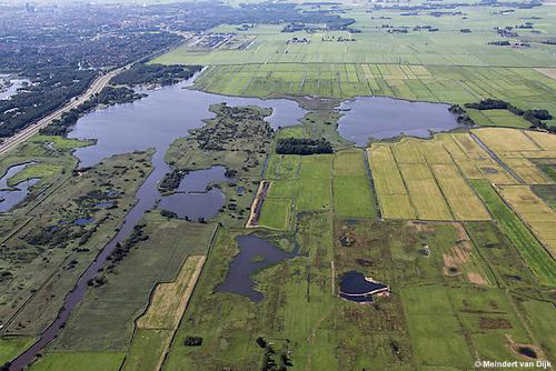 Grutte Wielen (Grote Wielen) - natuurgebied. Op de foto zijn twee eendenkooien te zien: midden de Kobbekoai en midden rechts de Buismanskoai (alleen de bomen zijn te zien). Linksboven bevindt zich de stad Leeuwarden.<br /> De Groningerstraatweg (N355) scheidt het Grutte Wielen-gebied van het natuur- en recreatiegebied De Groene Ster met daarin de Lytse Wielen (Kleine Wielen).