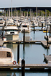 Many large yachts line Burnham Harbor on the lakefront in Chicago, IL, near Soldier Field with the McCormick Center in the background.