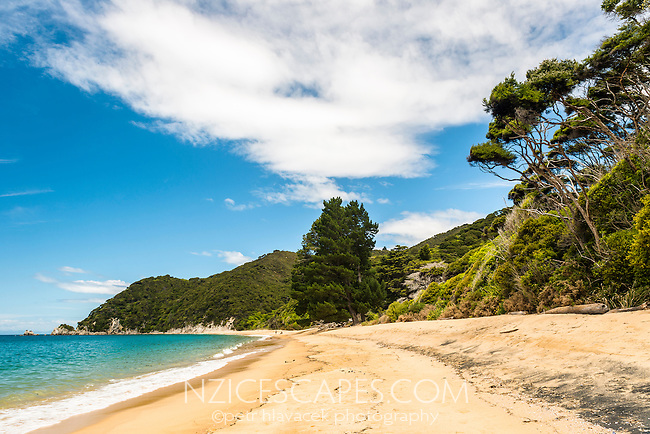 Anatakapau Bay on Abel Tasman Coast Track, Abel Tasman National Park, Nelson Region, South Island, New Zealand