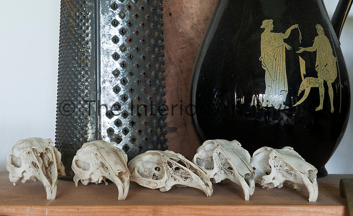 A strangely elegant group made up of a cheese grater, birds' skulls and a Greek vase