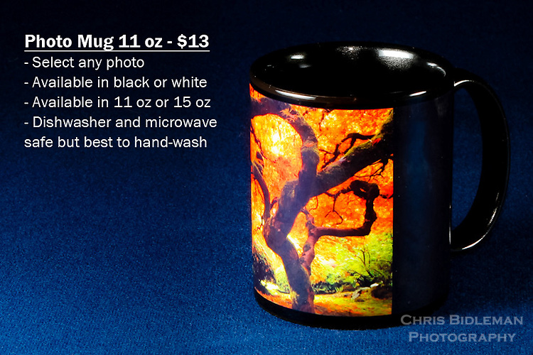 Coffee Mug 11oz Black - Have any photo from Chris Bidleman Photography collection on your cup.  Available in white mug too.<br /> <br /> To order, select your photo from the library, pick the &quot;buy&quot; button, and go to the &quot;products&quot; tab to select your size and color.