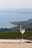 Glass of tsipouro. View of Ouranopolis. Mount Athos. Tsantali Vineyards & Winery, Halkidiki, Macedonia, Greece. Metoxi Chromitsa of St Panteleimon monastery.