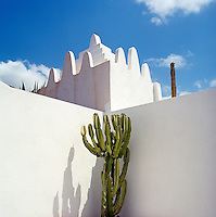 A whitewashed terrace outside the hammam is graced with a sculptural succulent