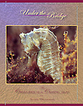 Under the Bridge- the book