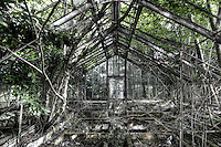 One of the awesome greenhouses at Potters. These really must have been a sight in their day. All supports were  beautifully case. As I believe the owner was a fan of orchids, and could imagine rows of them in bloom on benches, all carefully labeled and cared for. The smell of the flowers intermingling with the musty smell of compost and the humidity.
