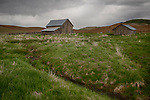 Washington, Eastern, Steptoe, Palouse Region. An old grey barn under  cloudy skies in spring.