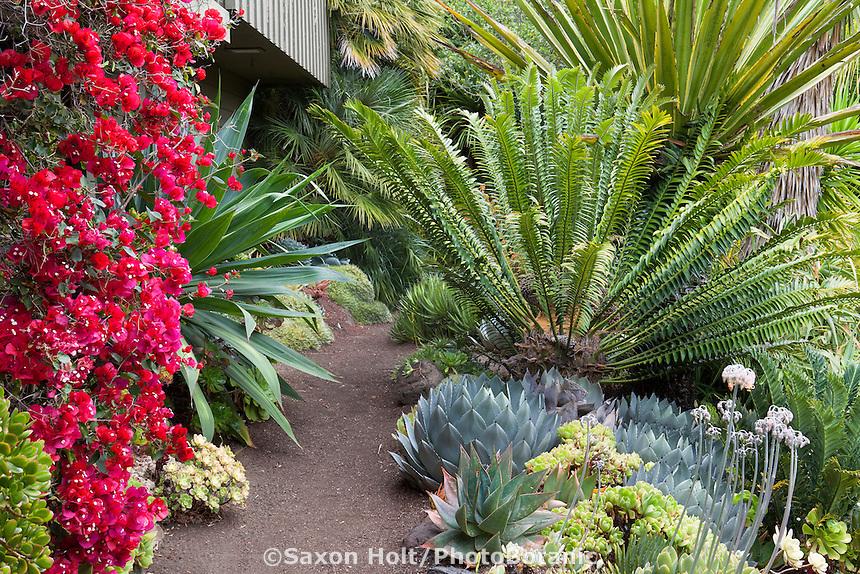 Holt 1063 Photobotanic Stock Photography Garden