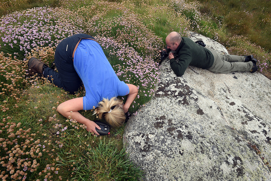 THE ISLES OF SCILLY SEABIRD RECOVERY PROJECT. JACLYN  PEARSON AND PETER EXLEY, RSPB, MAKING A MANX SHEARWATER COUNT BY PLAYING A RECORDING OF THEIR CALL INTO THEIR BURROWS.  17/06/2015. PHOTOGRAPHER CLARE KENDALL.